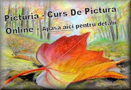 banner-picturia